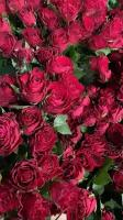 kwiaty i kwiatowe inspiracje 13