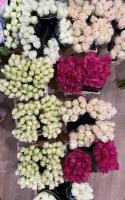 kwiaty i kwiatowe inspiracje 6