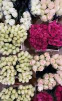 kwiaty i kwiatowe inspiracje 9